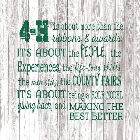 4h Backdrop Banner 4 H Club 4 H Showing Livestock