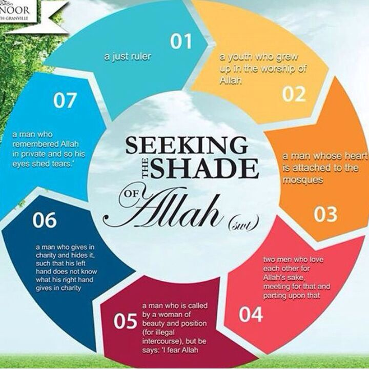 Seven Shades on the Day of Judgment when there are NO shades but Allah's