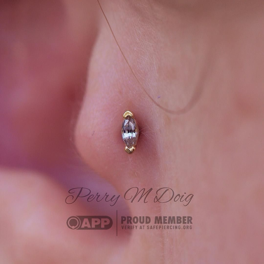 572 Likes, 3ments  Perry M Doig  Bvla (@perrymdoig) Tragus Earringsmarquise