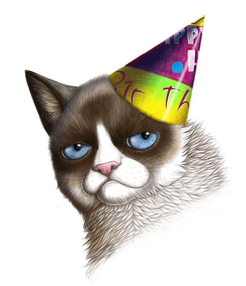 grumpy cat wedding invitations%0A Grumpy Cat by RitaRaven