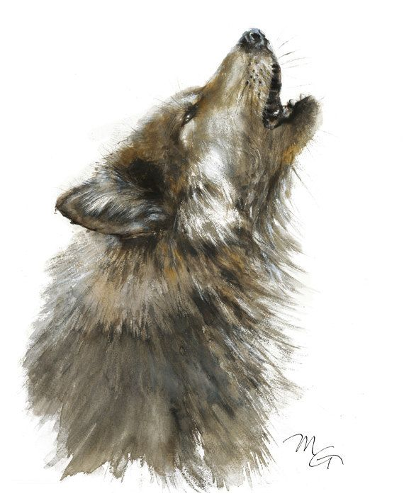 Loup Aquarelle Peinture Giclee Print Home Wall Decor Illustration