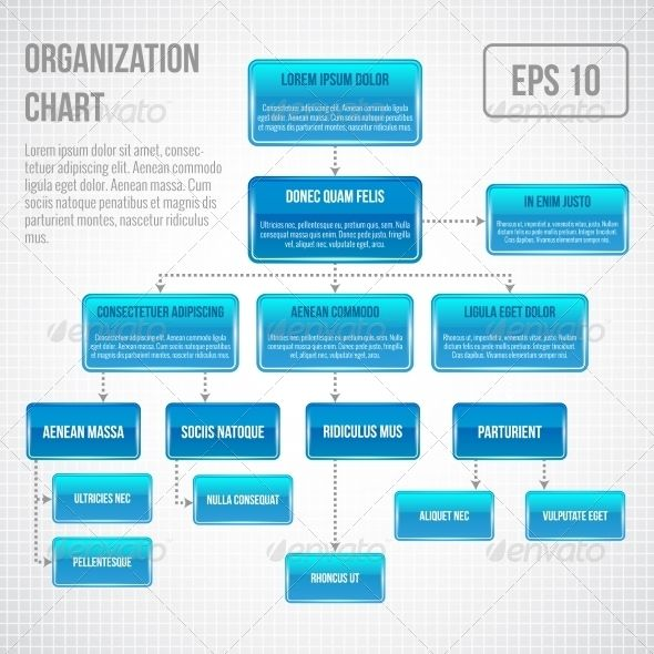 Organizational Chart Infographic | Infographic, Flowchart And Business