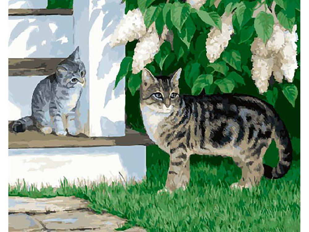 Картина по номерам «Кошка с котенком» | Cat art ...