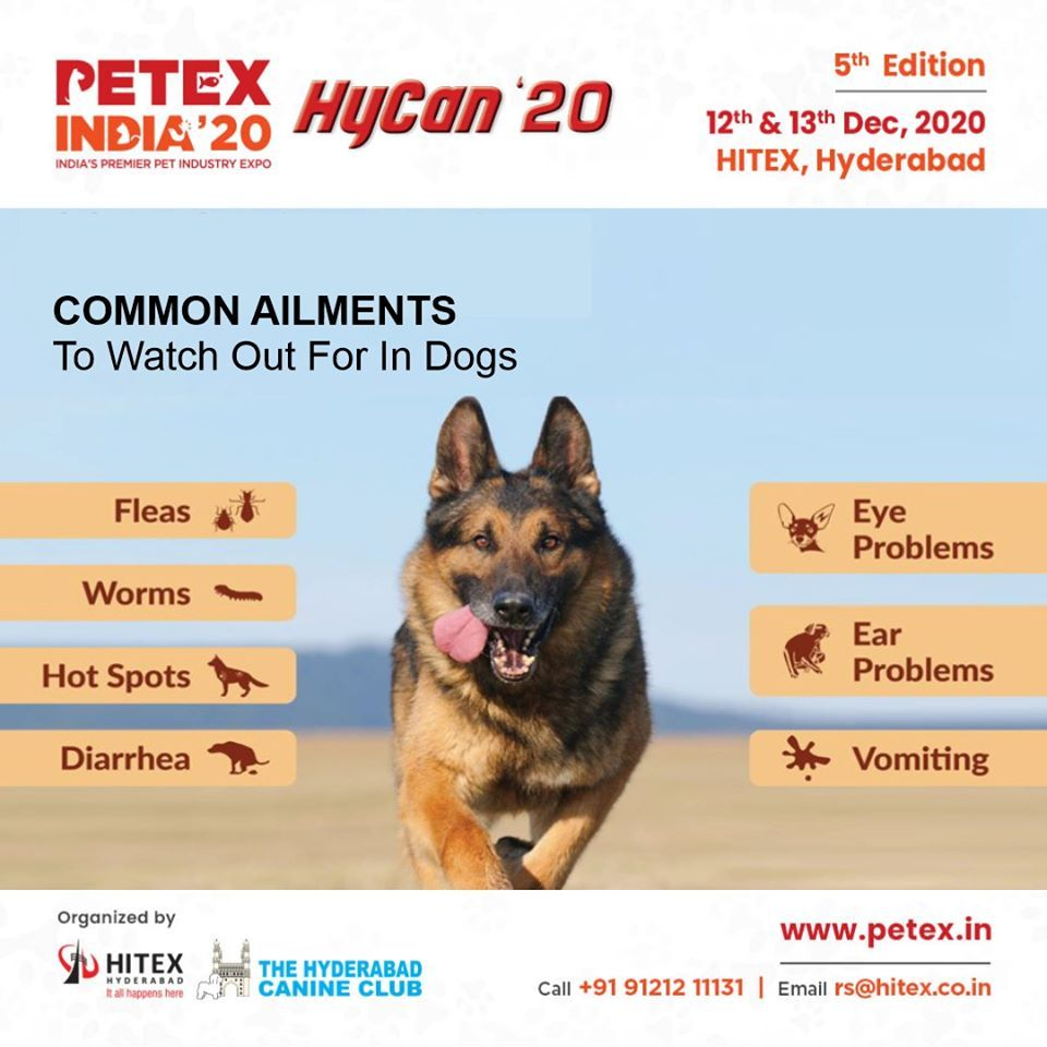 Petex India 20 5th India S Premier Exhibition For Pets In 2020 Pets Large Animals Eyes Problems