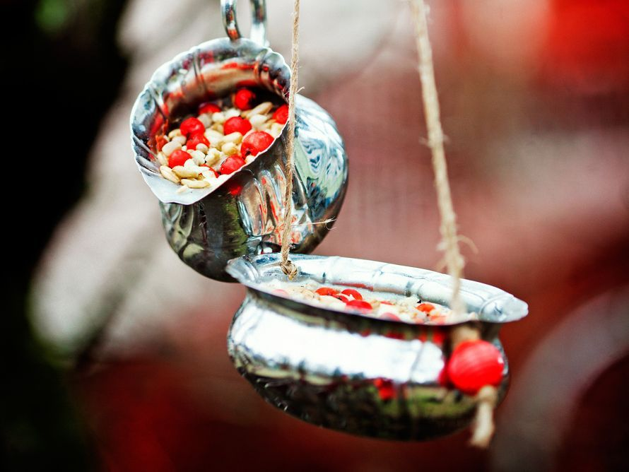 ET – Blogit | Reijan räsymatto – Tee itse siemenistä ja rasvasta linnunruokaa