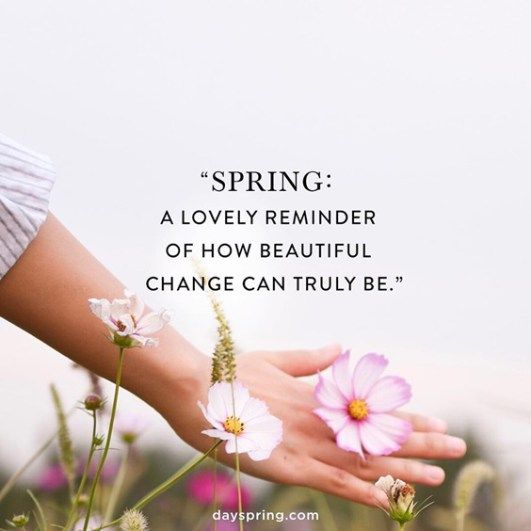93 Spring Quotes You're Going To Love Immediately | Springtime quotes,  Spring quotes, Bloom quotes
