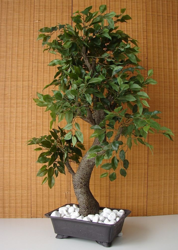 k nstlicher bonsai ficus benjamini birkenfeige 85cm kunstpflanze kunstbaum kunstblumen. Black Bedroom Furniture Sets. Home Design Ideas