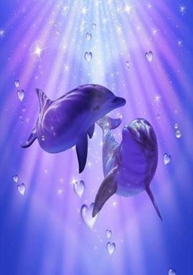 Dolphins Mobile Wallpaper Dolphin Art Mobile Wallpaper Fairy Wallpaper