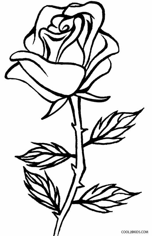 Passion Flower Line Drawing : Printable rose coloring pages for kids cool bkids