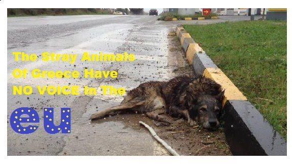 Remember it has been proved that those who abuse animals also abuse children. Lets try and make the EU a peaceful safe place to live.
