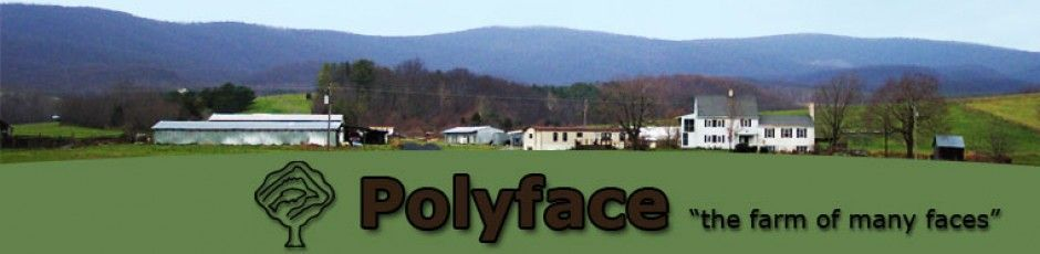 Polyface, Inc. is a family owned, multi-generational, pasture-based, beyond organic, local-market farm and informational outreach in Virginia's Shenandoah Valley.