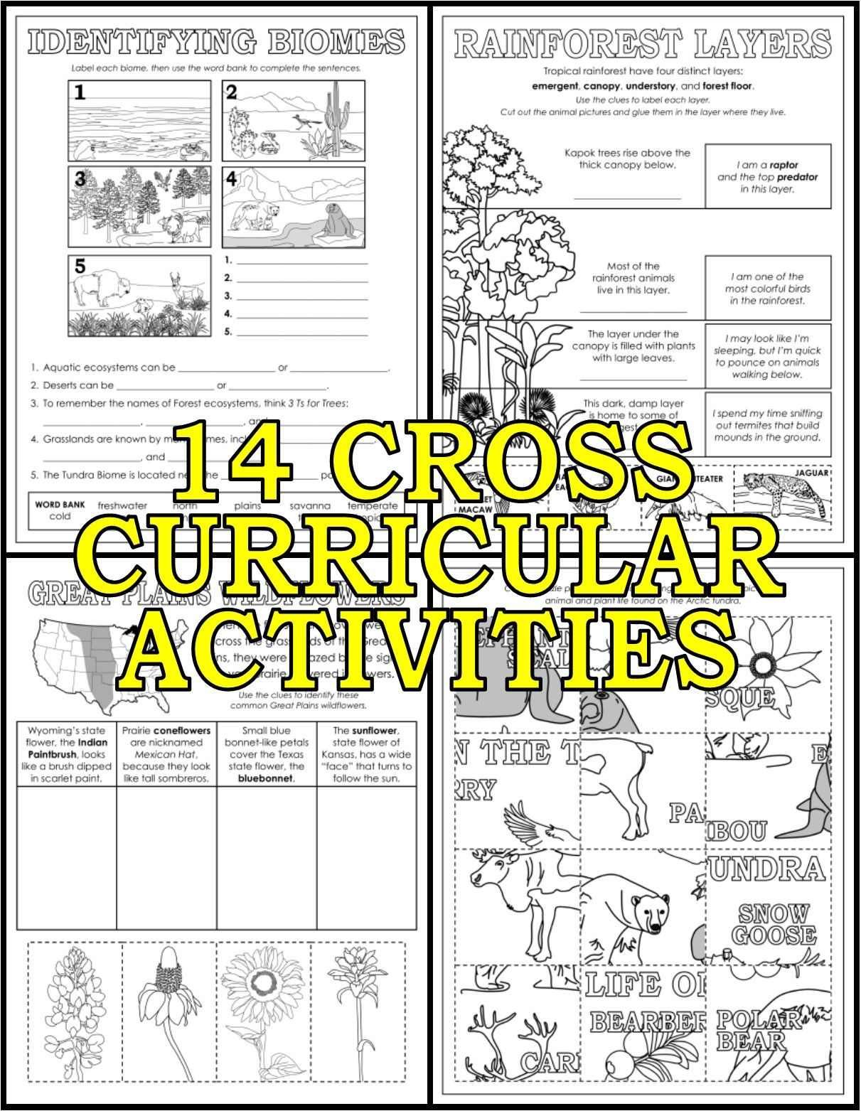 Biomes And Ecosystems Activity Pack In