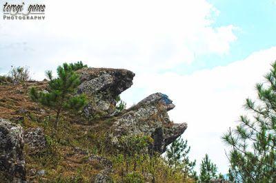 Mt. Ulap Eco Trail, Itogon, Benguet #nature #camping #hiking #choosephilippines #itogon #itogonbenguet