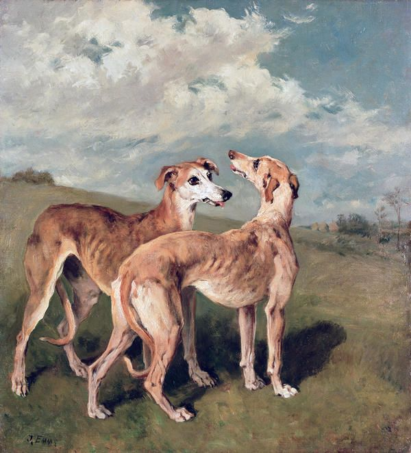 Greyhounds | John Emms | Oil on canvas