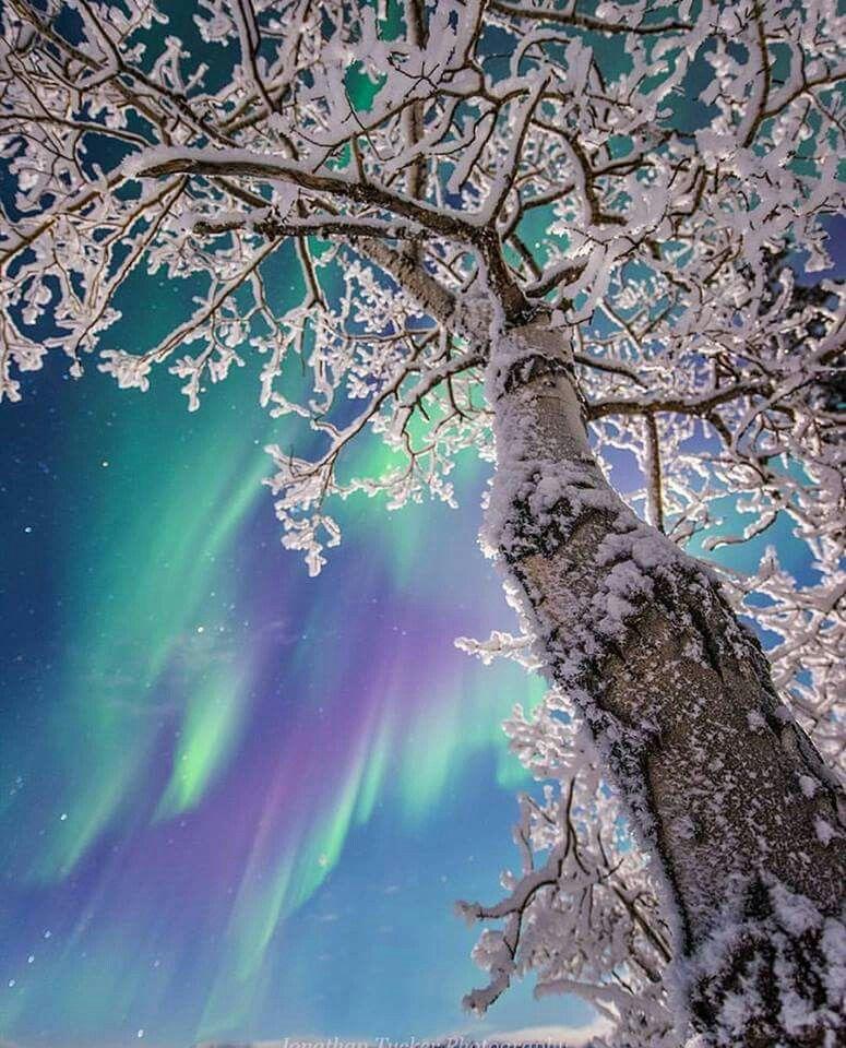 Yukon Territories Northern Lights