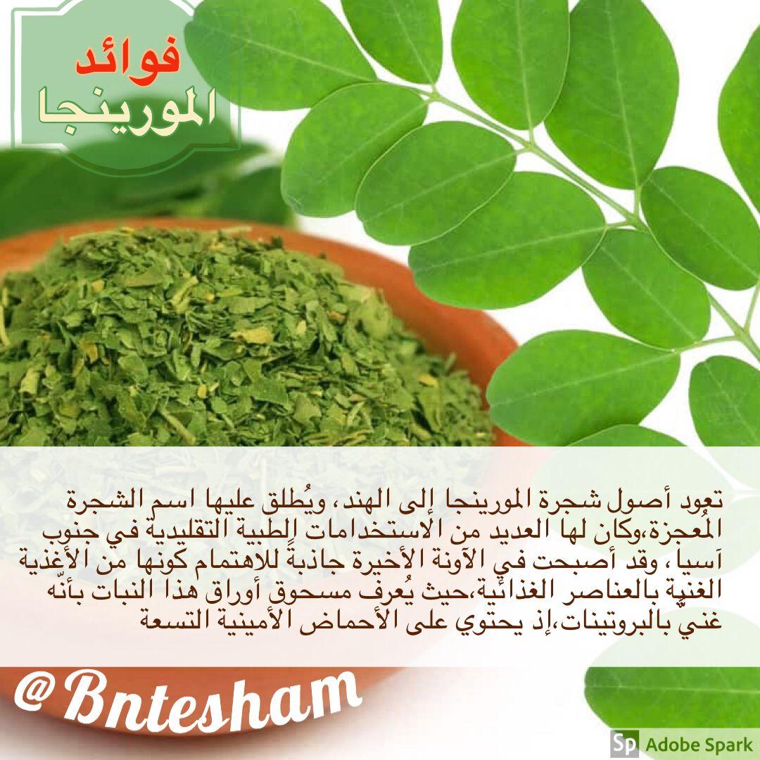 فوائد شاي المورينجا Health Tips Herbs Health