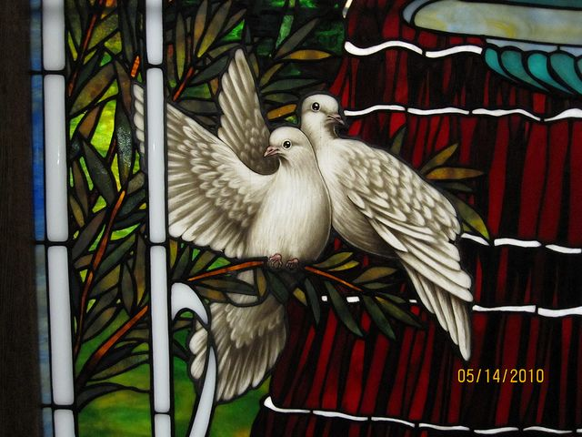 Dove detail by Stained Glass Painter / Jim M. Berberich, via Flickr