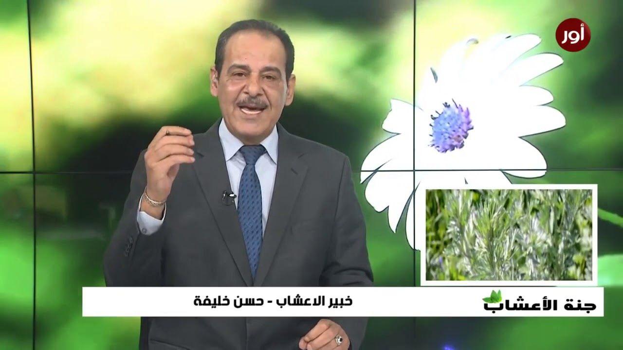 فوائد عشبة الشيح مع خبير الاعشاب حسن خليفة جنة الاعشاب Nature Incoming Call Screenshot