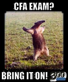 Cfa Exam Bring It On Cfa Pinterest Funny Happy Animals And