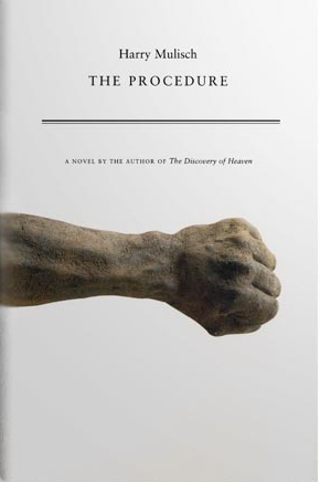 The Procedure Author Harry Mulisch Publisher Penguin Non