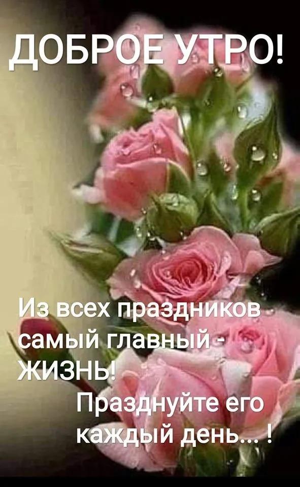 2 Neprochitannyh Chata Utrennie Citaty Pozitivnye Citaty Utrennie Soobsheniya