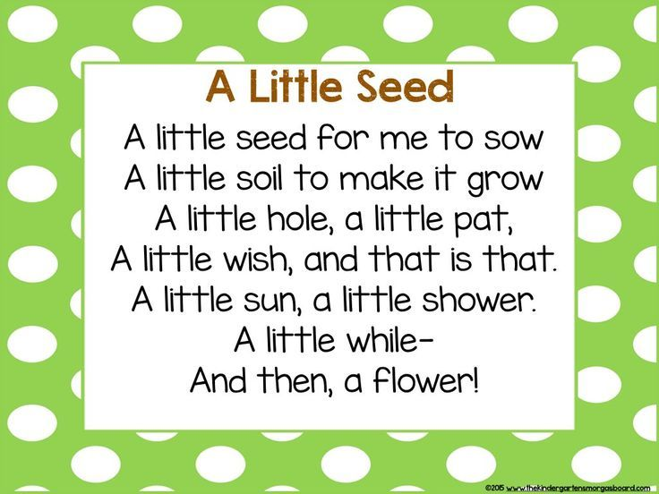 Search poem plants and learning for Gardening classes near me