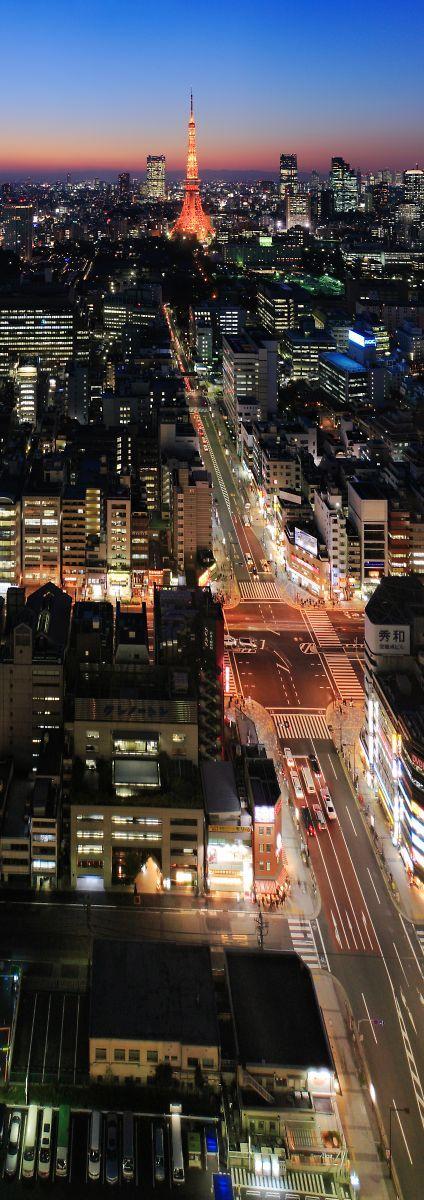 東京   道路    夜