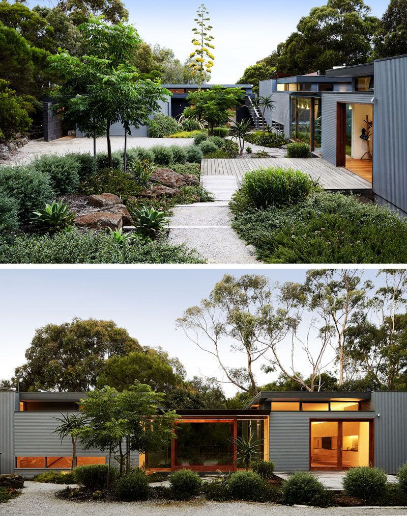 This modern house has a lush courtyard that guides visitors to the front door