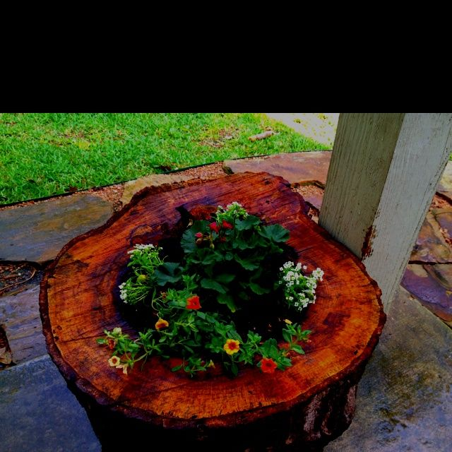 Hollow Tree Planters Pinterest Com Log Planter Planters
