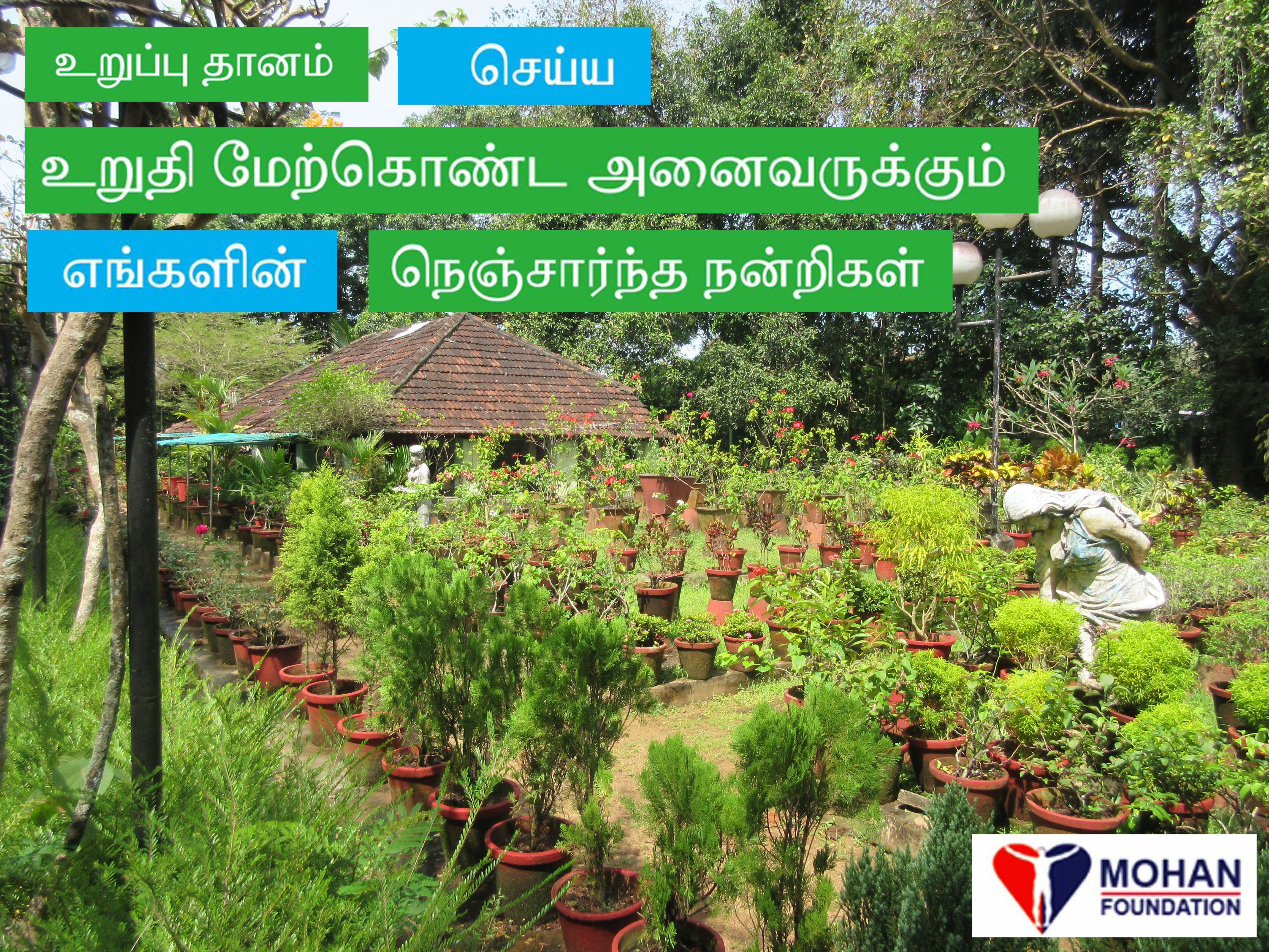 Kochi, Kerala gardens #drbarryindia @MOHANFoundation