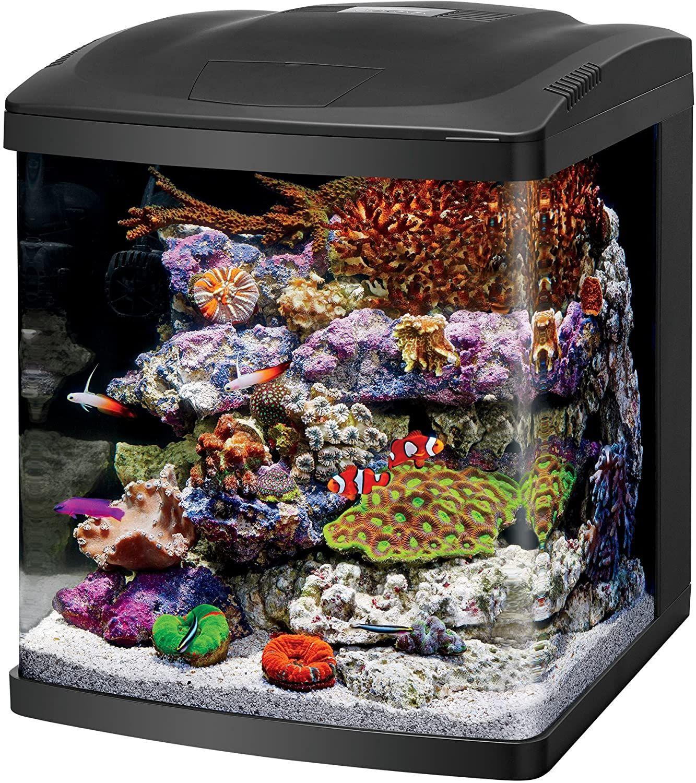 Kozzeteve Itt Best All In One Fish Tanks