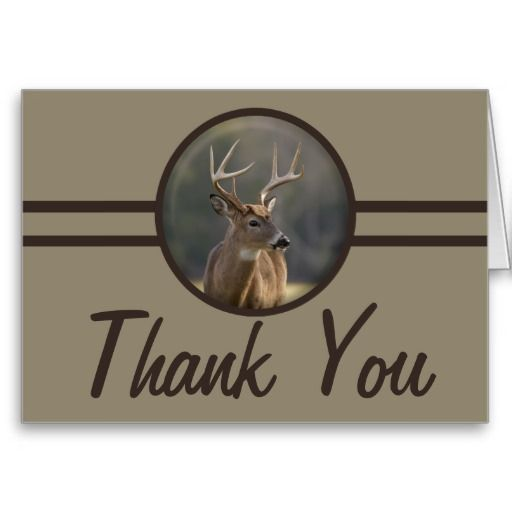 =>>Save on          	Hunter Whitetail Buck Thank You Card           	Hunter Whitetail Buck Thank You Card In our offer link above you will seeDeals          	Hunter Whitetail Buck Thank You Card Review on the This website by click the button below...Cleck Hot Deals >>> http://www.zazzle.com/hunter_whitetail_buck_thank_you_card-137032684202025964?rf=238627982471231924&zbar=1&tc=terrest