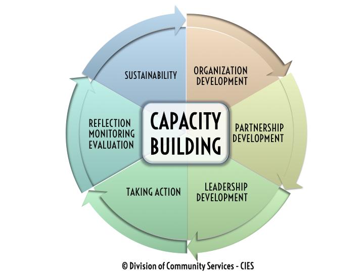 24 Capacity Building Ideas Capacity Building Capacity Building