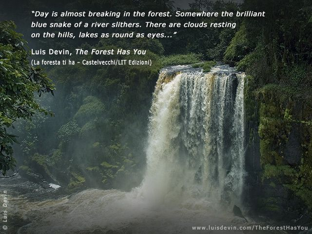 The great waterfall | Waterfall quotes, Waterfall, Waterfall photo