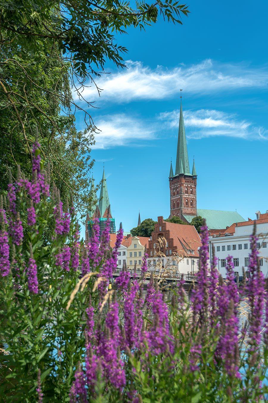 Der Petriturm von Blumen umrahmt | Wir sind Lübeck | Pinterest