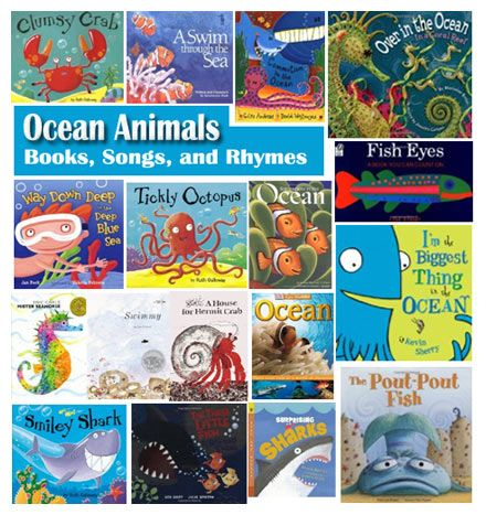 Ocean Animal Book Suggestions And Ocean Animals Rhymes And Song