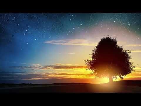 92) Beautiful Relaxing peaceful instrumental music