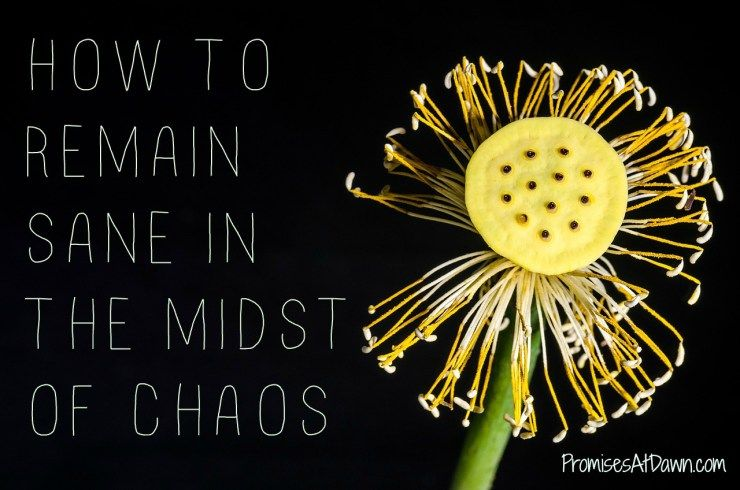 keeping your peace in the midst of chaos blog blogger christian blog christian blogs chaos peace pinterest