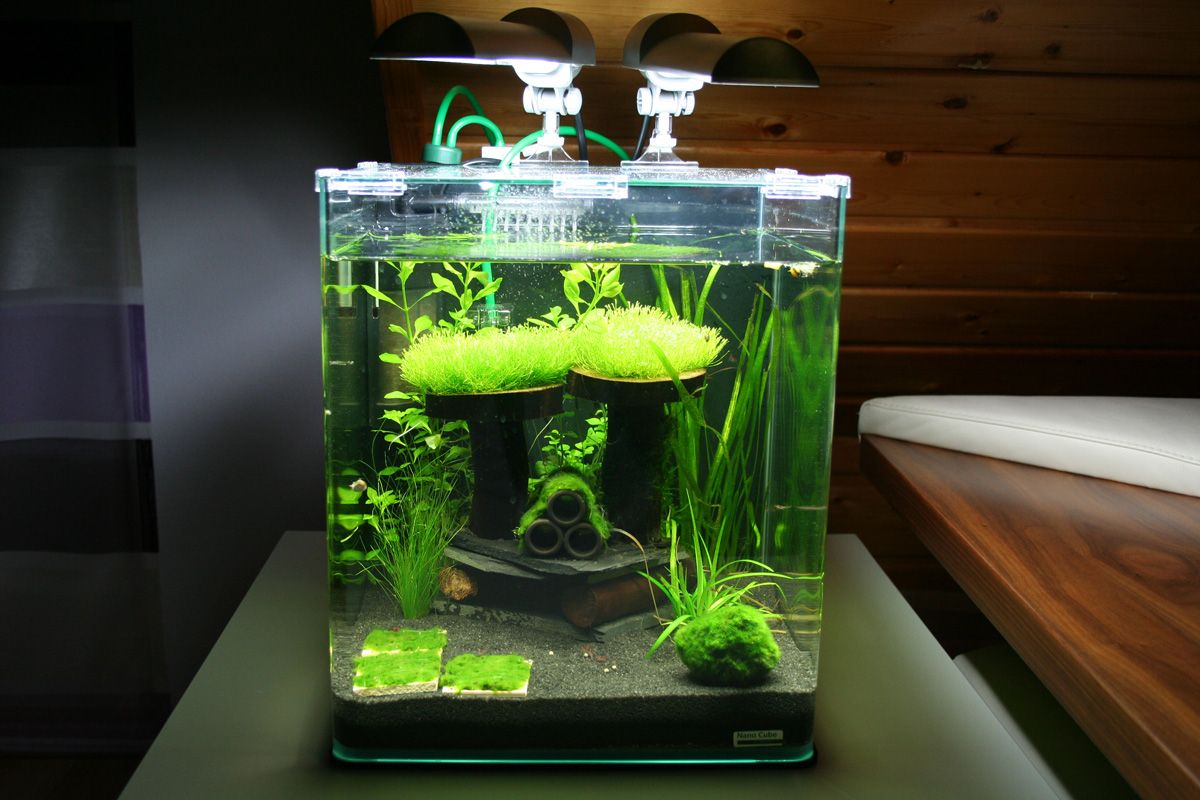 Aquarium nano fish tank - Some Reef Aquariums For Your Inspiration