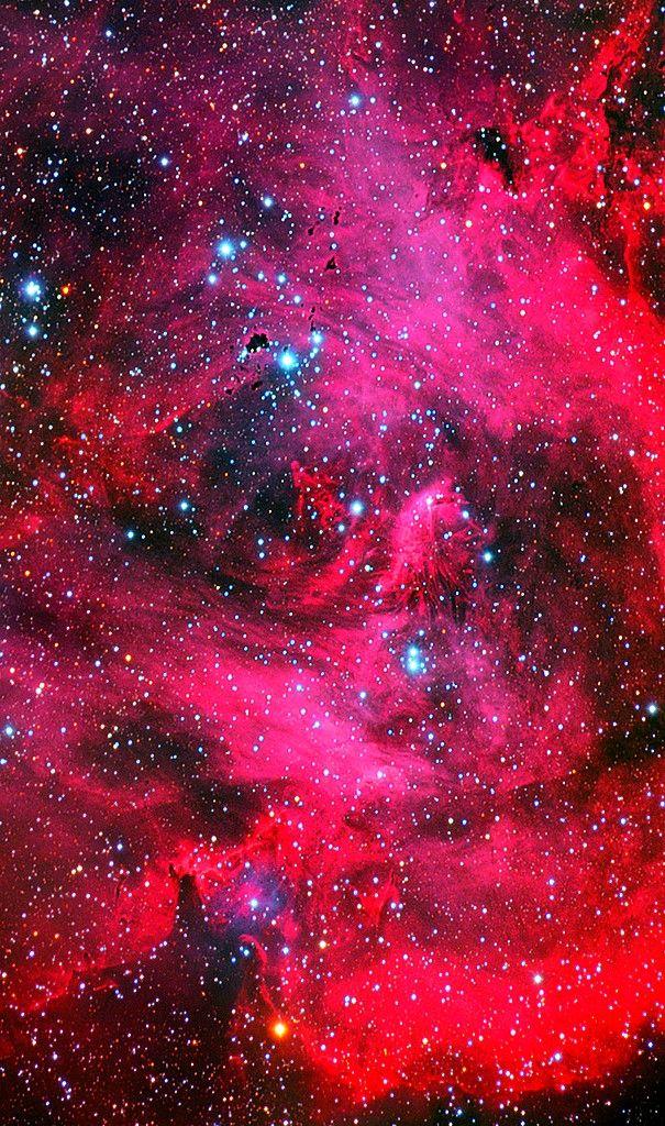 Lying about 6000 light years away in the constellation of Centaurus, the Running Chicken Nebula aka the Lambda Centauri nebula, IC 2948 is located just a few degrees southeast of the famous Eta Carinae nebula.