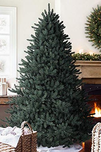 Balsam Hill's BestSelling Faux Tree Just Secretly Went on