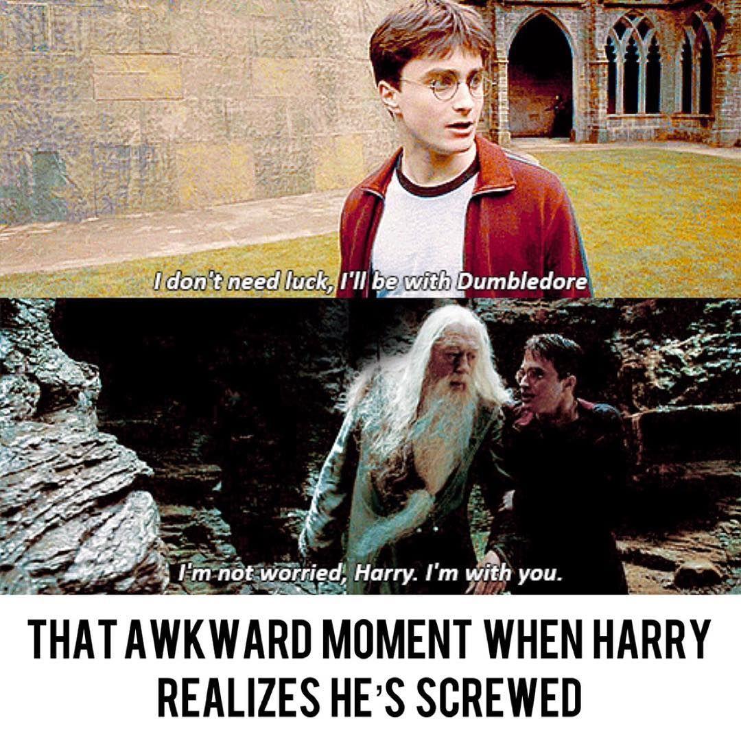Harry Potter Memes On Instagram Harrypotter Memes Harrypottermemes Hermionegranger Ronweasley Wizard Boo Harry Potter Memes Hilarious Harry Dumbledore