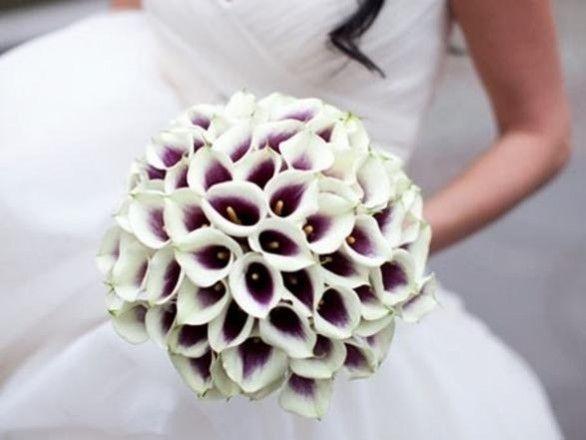 Bouquet Sposa Calle.Bouquet Sposa Calle Bouquet Di Gigli Bouquet Di Calle E Auguri
