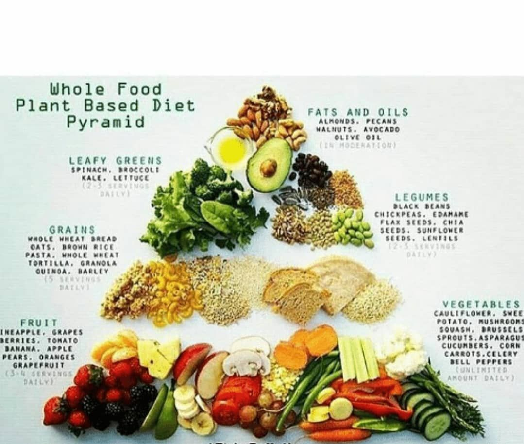 plant based diet calorie intake