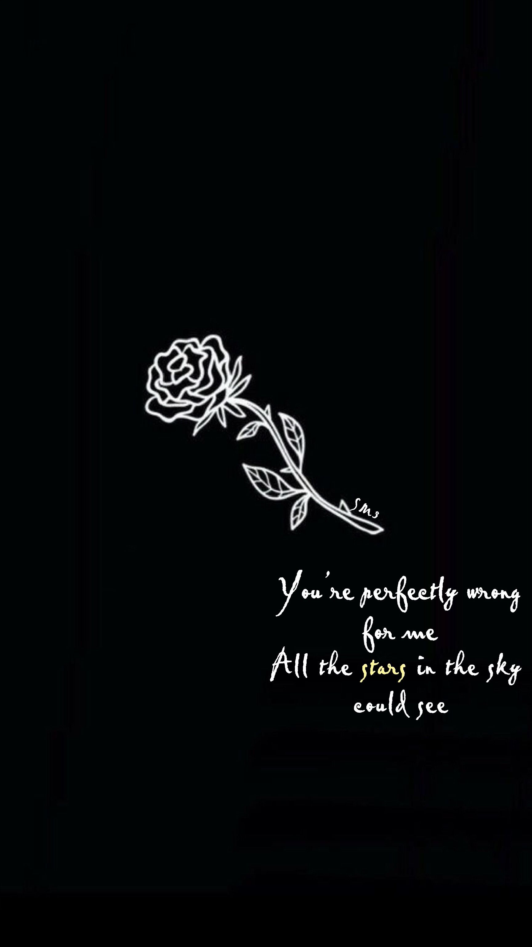 Pin By Beth On Shawn Mendes Shawn Mendes Quotes Shawn Mendes Lyrics Shawn Mendes Songs