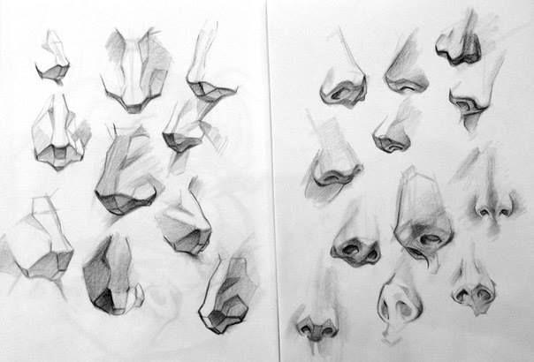 Tutorial Para Dibujar La Nariz Humana Dibujo Nariz Dibujos Figura Humana Ilustraciones