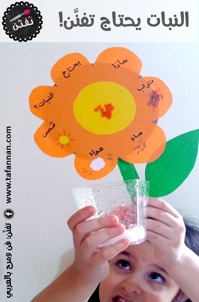 نشاط علمي ماذا يحتاج النبات للاطفال What Plants Need School Activities Bug Crafts Science Projects