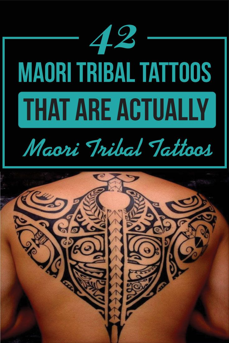"42 Maori Tribal Tattoos That Are Actually Maori Tribal Tattoos is part of Maori Tribal Tattoos That Are Actually Maori Tribal - Tribal tattoos are often generalized together as if they came from one big tribe  I'm sorry to say but that's just not the case  It's true that the different types of tribal tattoos did influence each other in various ways but for the sake of this article, we will be discussing one particular type of tribal tattoo which originated with the Maori tribe in New Zealand  After getting fed up with all these lists floating around the web of socalled ""Maori Tattoos"", which in fact turned out not to be Maori at all, I decided to put together a collection of tattoos that were"
