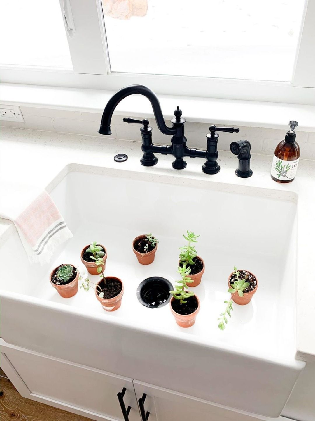National Plant a Flower Day in 2020 Sink, Installation