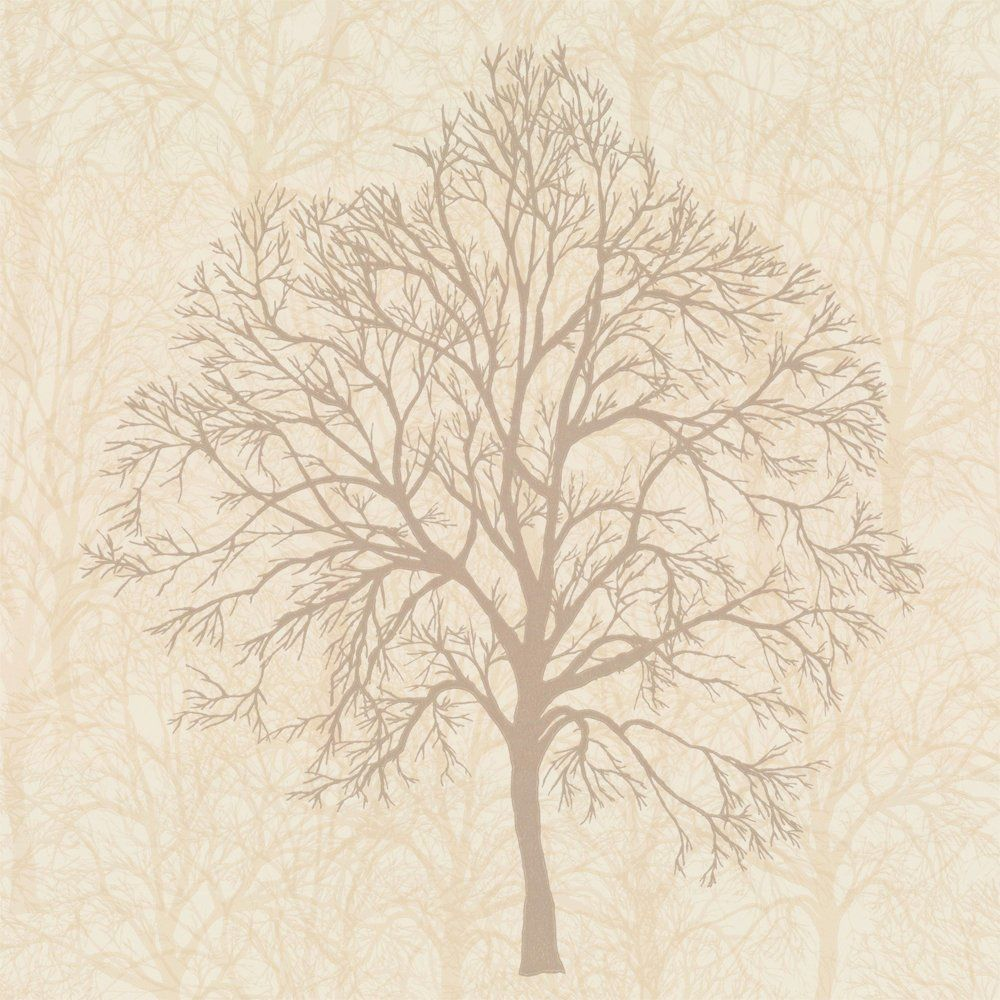 Buy Graham and Brown Enchant Trees Wallpaper Blonde Cream